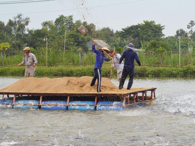 Máy lọc nước tại An Giang