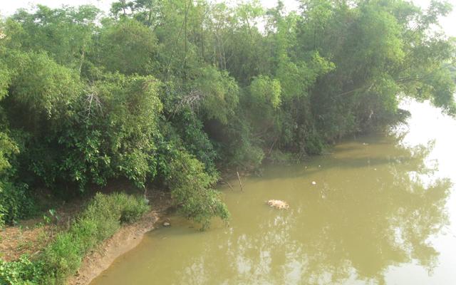 Máy lọc nước ở Đà Nẵng
