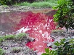 Xử lý nước thải dệt nhuộm - Công ty Cao Nam Phát